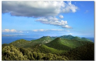 Mljet, Photo: Nikola Hazdovac